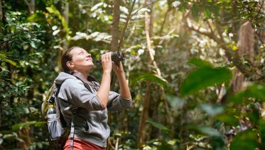Rainforest Lovers' Tour in Costa Rica