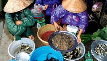 Real Food Adventure Vietnam & Cambodia