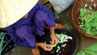 Real Food Adventure - Vietnam