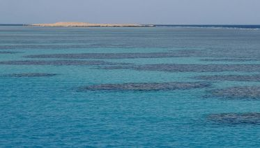 Red Sea From Cairo In One Day Tour