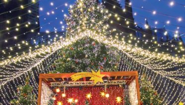 Rhine Holiday Markets (2021)
