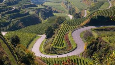Rhine Valley Cycle