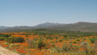 Richtersveld 4 days 5 nights