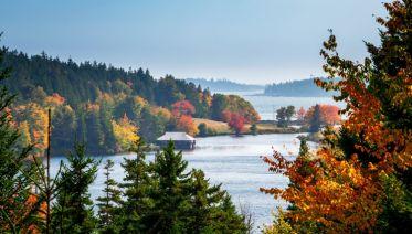 Roaming Coastal Maine