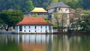 Sacred Sri Lanka - Free Upgrade To Private Tour Available