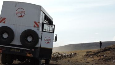Safari To Kilimanjaro - Machame Route