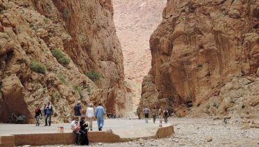 Marrakesh Tours