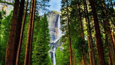 San Francisco To Yosemite Mini