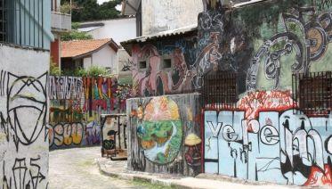 São paulo city tour advanced
