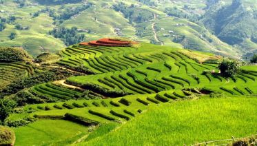 Sapa By Bus - 2 Days 1 Night Stay In A Hotel