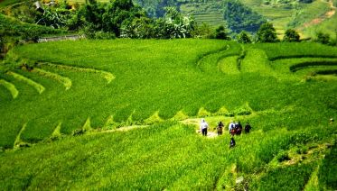 Sapa By Train - 3 Days 4 Nights Hotel & Homestay