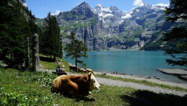 Self-Guided Classic Swiss Alps Walk