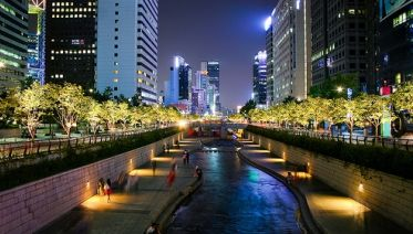 Seoul City Night Tour