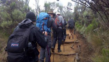Seven-Day Kilimanjaro Climb: Shira Route