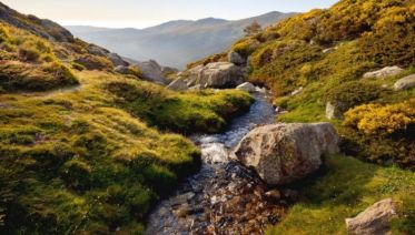 Sierra De Guadarrama: The Mountains Of Mad