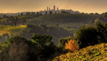 Small Group Chianti & San Gimignano Sunset Wine Tour