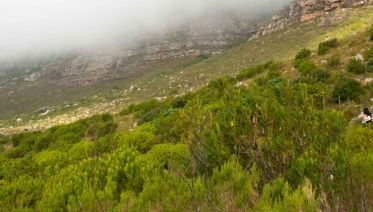 South Africa: Hike & Bike