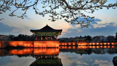 South Korea Excursion: 14 Days