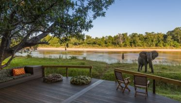 South Luangwa Walking Safari