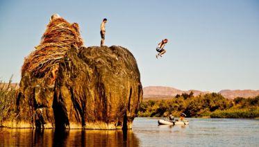 Southern African Adventurer