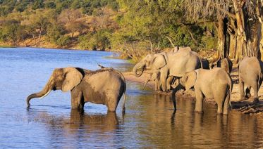 Southern African Magic Accommodated