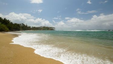 Southern Coast Beach Tour - Free Upgrade To Private Tour Available