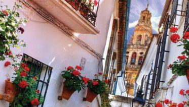Spanish Wonder