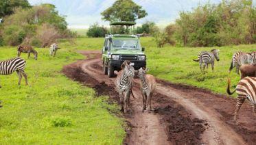 Spectacular 11-day Safari With Maasai Tour And Zanzibar