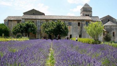 Spectacular South of France with Paris