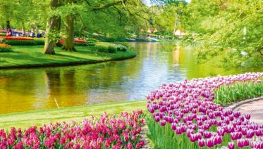 Springtime In Holland And The Romantic Rhine Valley (port-to-port Cruise)