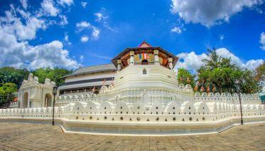 Sri Lanka Central Highlands Tour: 5 Days