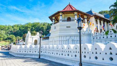 Sri Lanka Heritage Private Tour: 6 Days