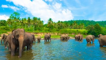 Sri Lanka: Hike, Bike & Kayak