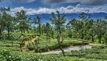 Sri Lanka Spice Trails