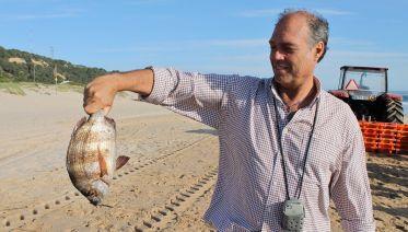 Sun, Sea & Fish: a portuguese lunch