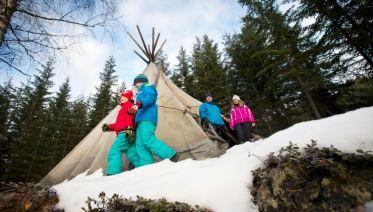 Swedish Winter Adventure