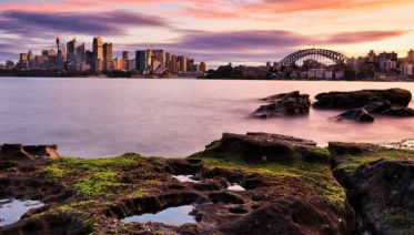 Sydney's Food & Wine Discovery