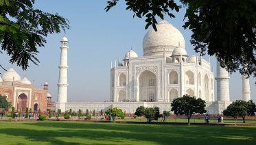 Taj, Tigers & Majestic Forts
