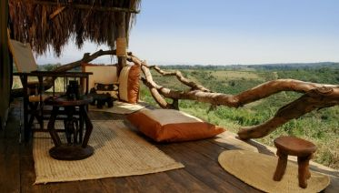 Tanzania Lodge Safari