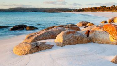 Tasmanian Footsteps