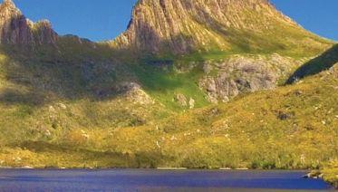 Tassie's Wilderness Icons