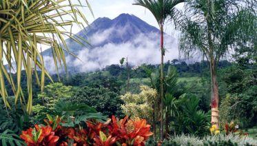Taste of Costa Rica
