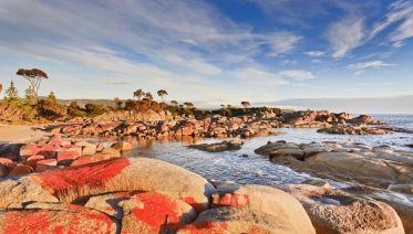 Taste Of Tasmania (Original)
