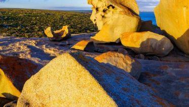Tastes of Southern Australia