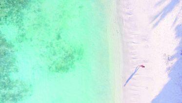 Thai Islands Flexi Hopper