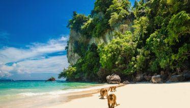 Thai Islands Hopper