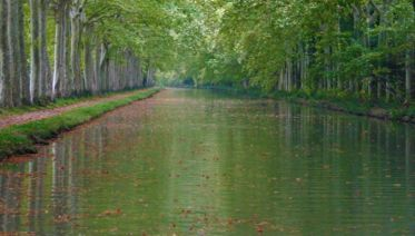 The Canal du Midi  (Castelnaudary to Homps)