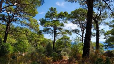 The Lycian Way East