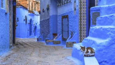 The Marrakesh Express: Hippie Tour