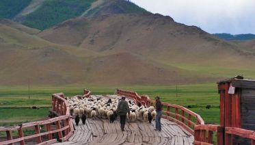 The Silk Road & Mongolia